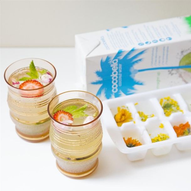 coconut water iceblocks