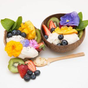 Cocobella Coconut Frozen Yoghurt